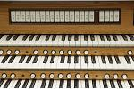 Organ of the Week